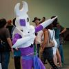 AX2010_0385