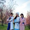 Sakura Gatherings 2011